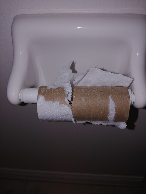 The Fuss About Toilet Paper by Terry Ryan - Slim Healthy Sexy